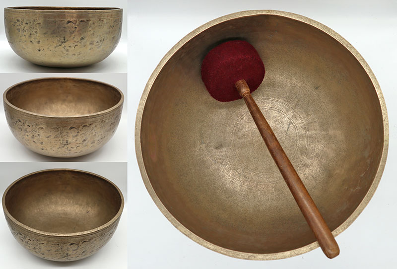 """Glorious Full-Bodied Golden 12 ¾""""Jambati Temple Singing Bowl – Low Perfect Pitch A2"""